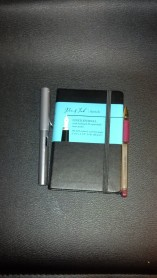 Pen and Ink Lined Journal. Pocket Sized.