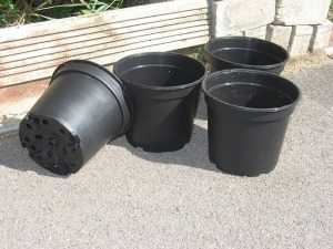flower-pots-215692_640